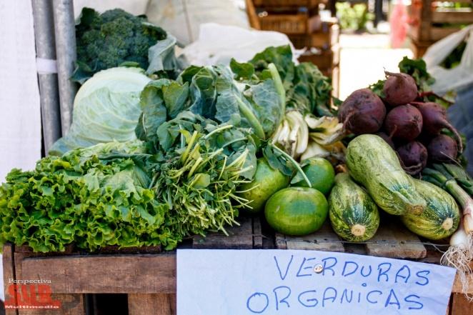 """La campaña """"Ahorro Vecino"""" llega a la Plaza Rigolleau: 35 productos por 500 pesos"""