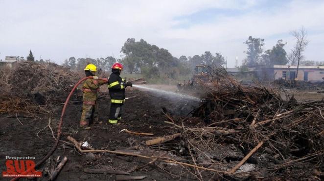 Más de 200 bomberos trabajaron en el incendio en la ex Massuh