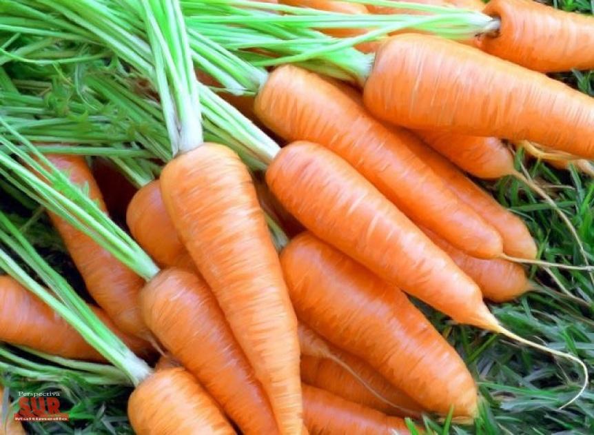 Siete razones para comer zanahorias