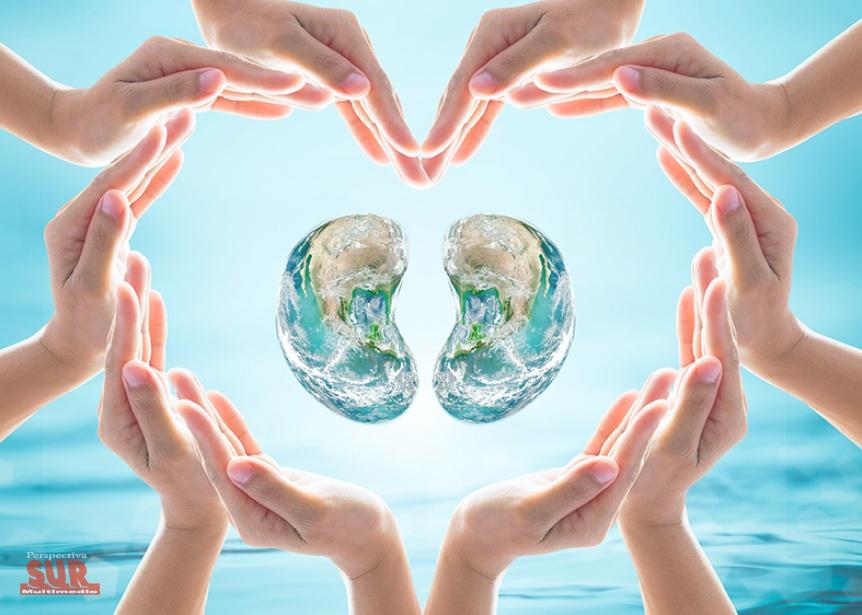 El CUCAIBA realiza actividades por el Día Mundial del Riñón